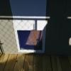 6 x 10 Dog Kennel Stock#1113-W